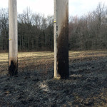 power lines showing burn marks from brush fire 150x150 - Photo Gallery