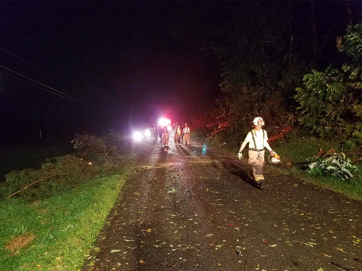 Firefighters remove downed trees blocking Tamarack Drive