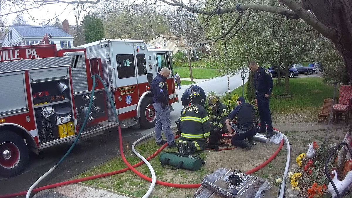 Firefighters provide oxygen to a dog rescued from the second floor